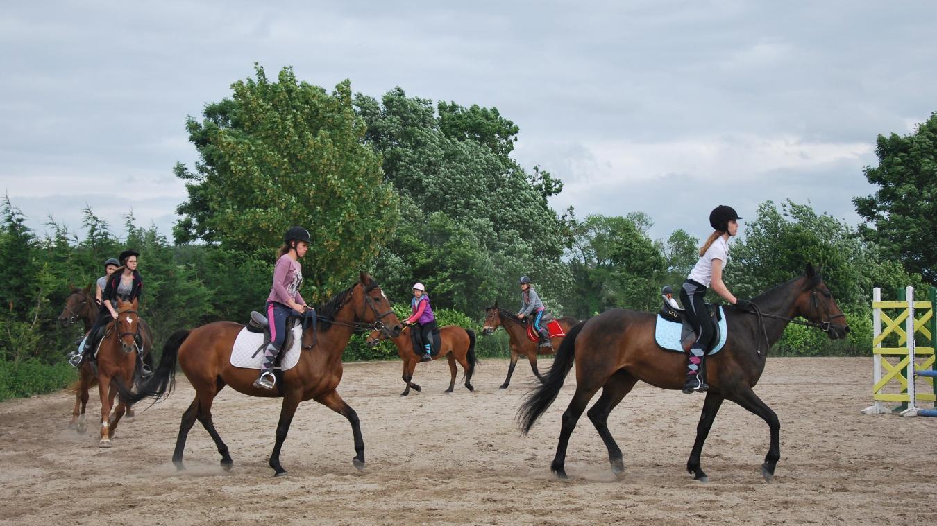 Saint-André : 3ème édition des rencontres équestres internationales