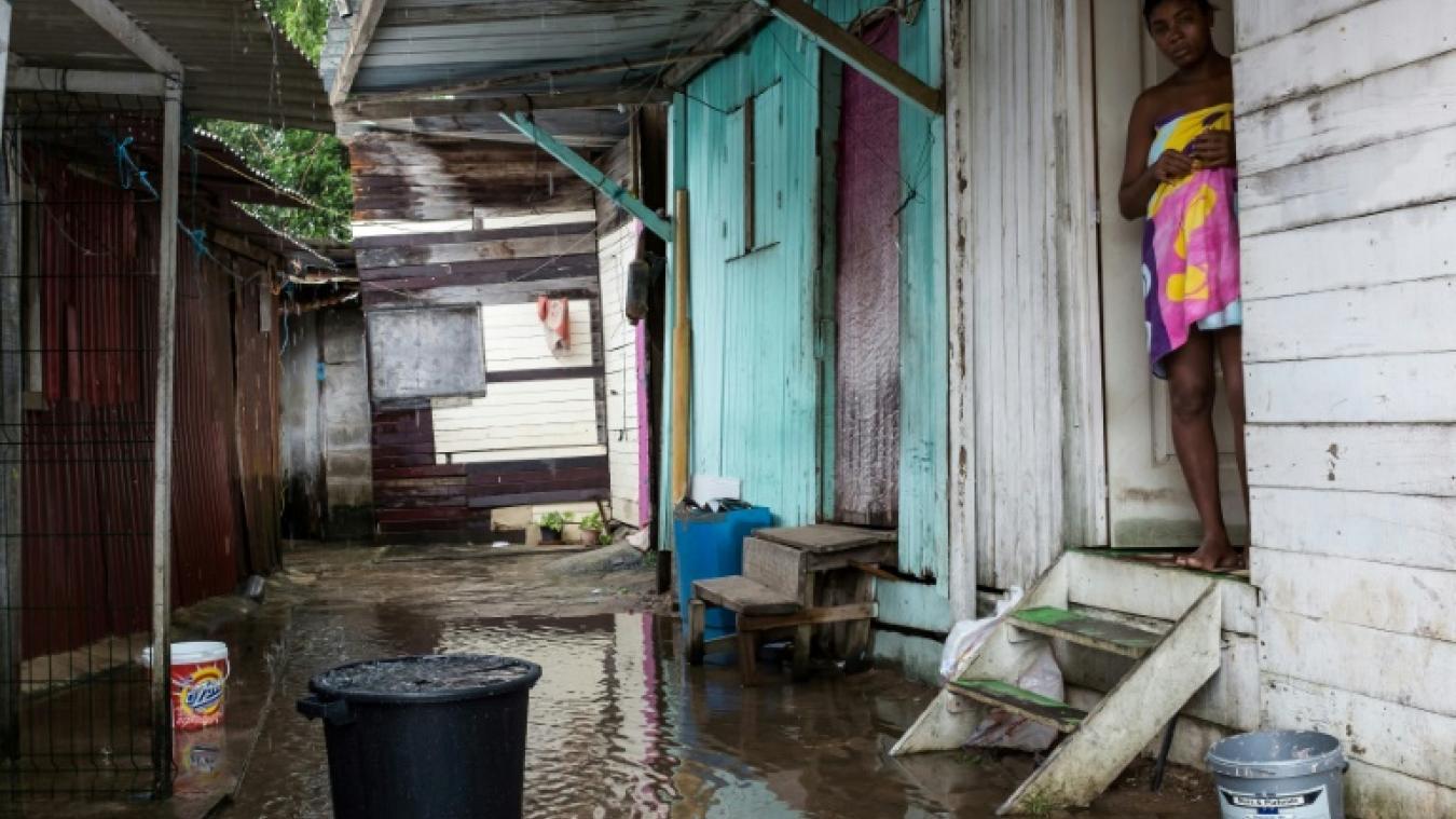 Salle De Bain Guyane ~ guyane cayenne les rats traversent le bidonville