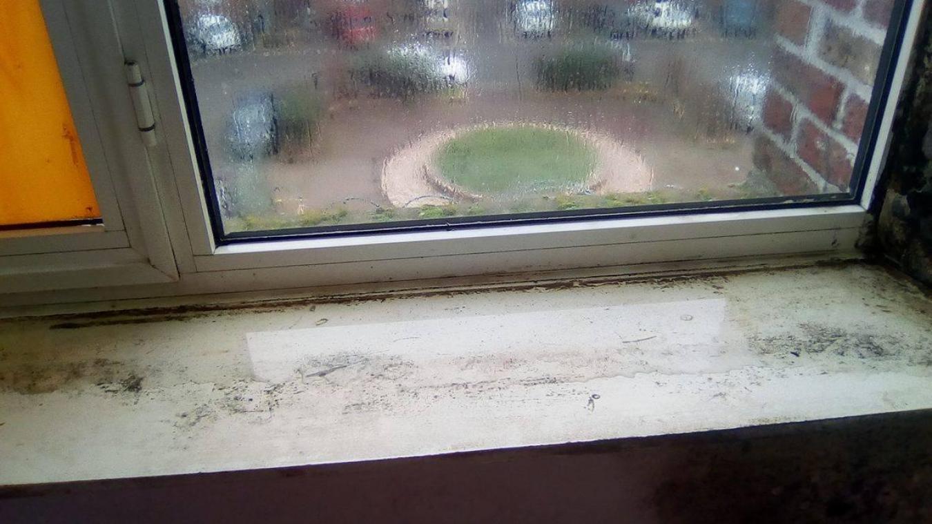 difficile de nier que ce logement situ rue de la tour a un problme - Probleme D Humidite Appartement