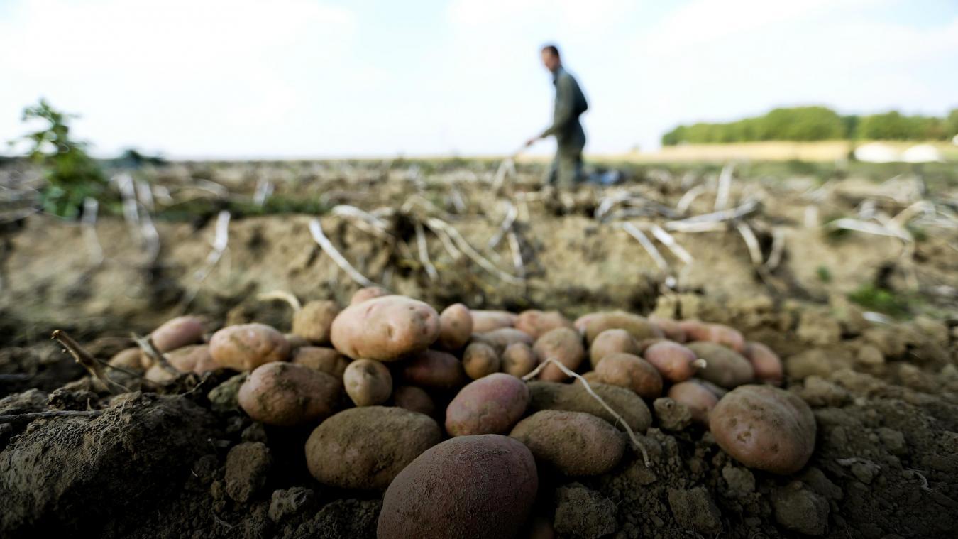 Metropole Lilloise Les Agriculteurs Belges A L Assaut Des Terres