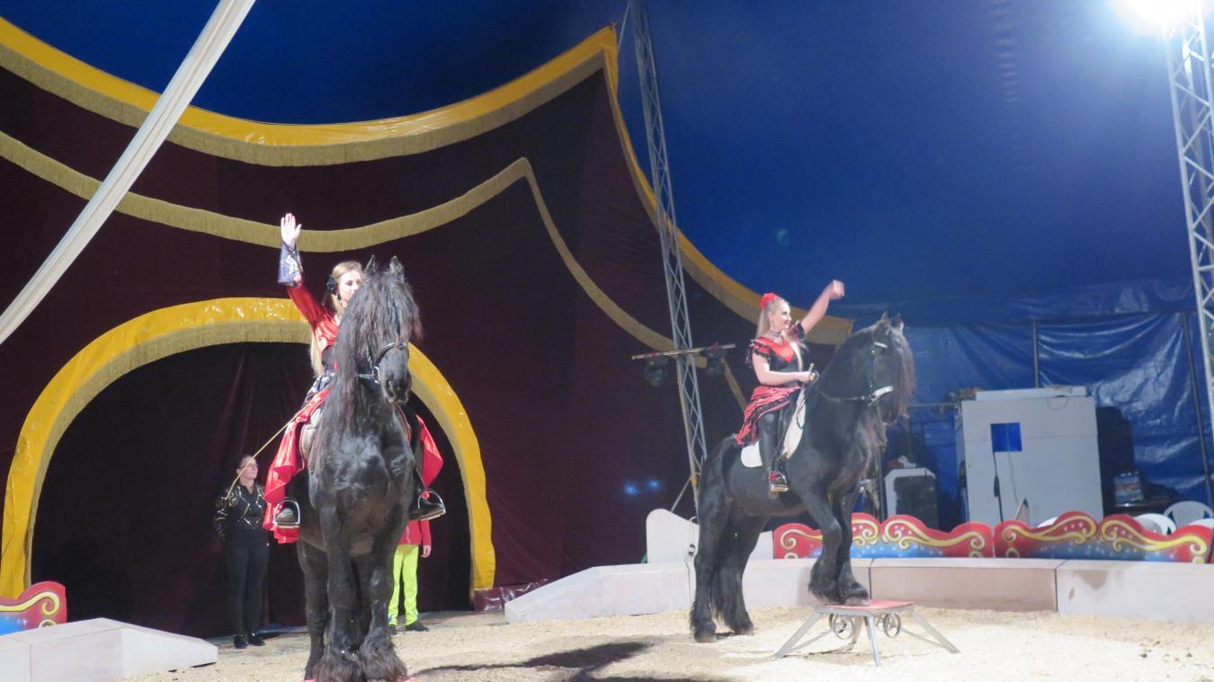 Saint Andre Lez Lille Animaux Jongleurs Clowns Le Cirque