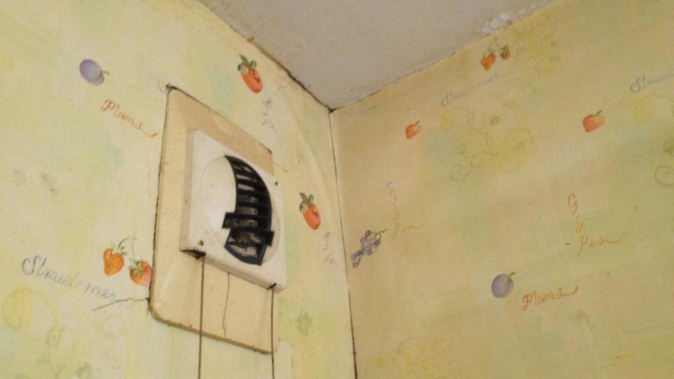 lt 2015 lors de lentre du locataire dans le logement lappartement souffrait de problmes dhumidit incompatbiles avec ltat de sant du - Probleme D Humidite Appartement