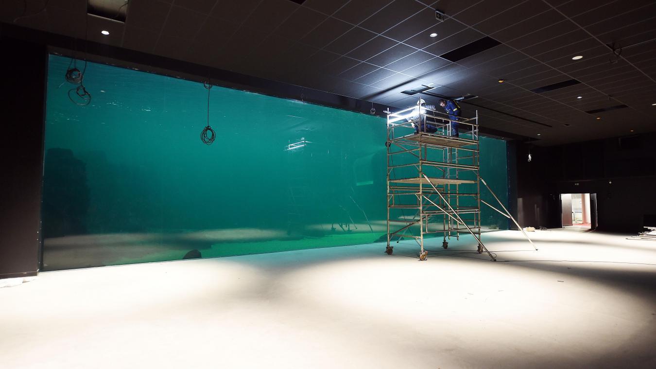 Vue Sur L Aquarium Geant A Travers Une Immense Baie Vitree De 20m X 5m