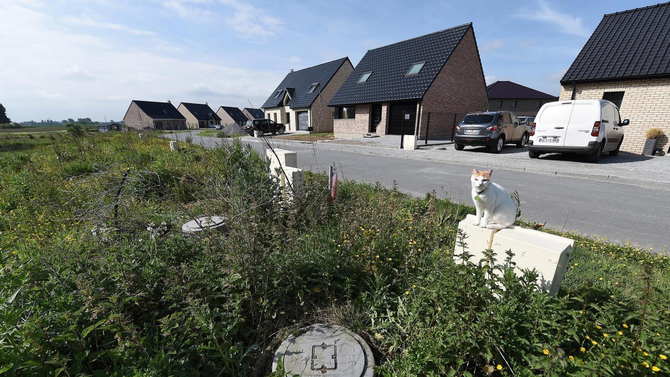 Kulina Cuisine Et Salle De Bain ~ Hauts De Flandre Les Nouveaux Habitants Du Dunkerquois Continuent