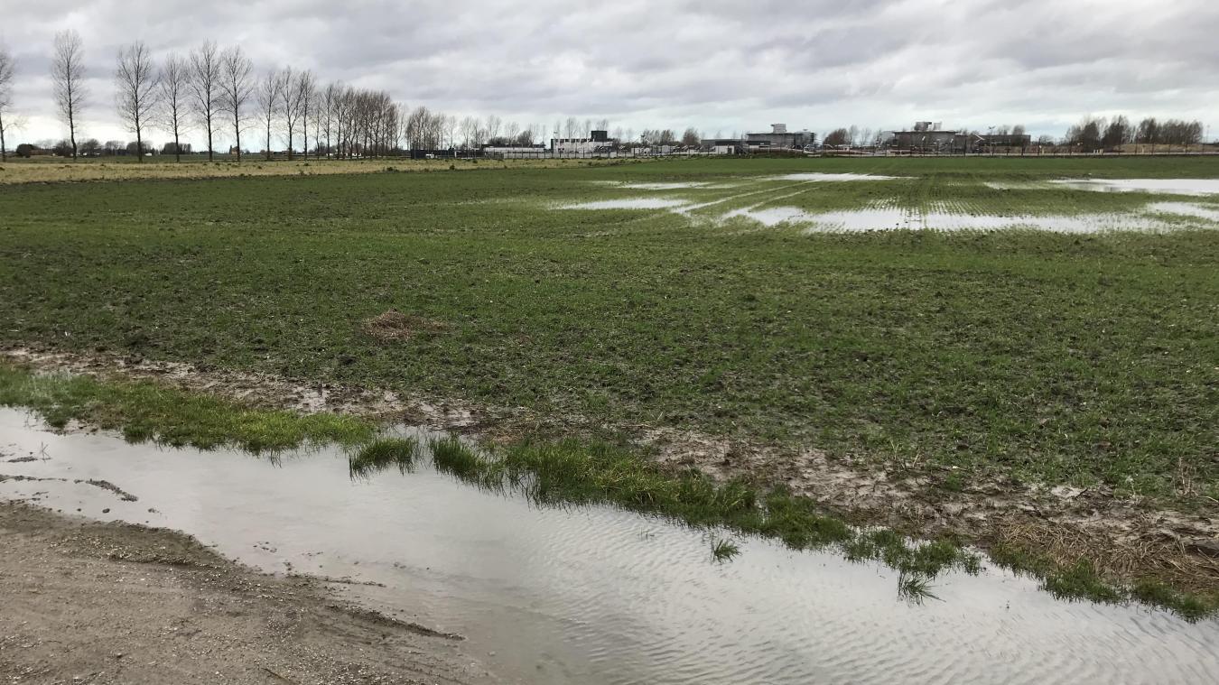 Le projet de poulailler concerne cette parcelle, située en bordure du canal de Pitgam et de la station de compression GRT Gaz.