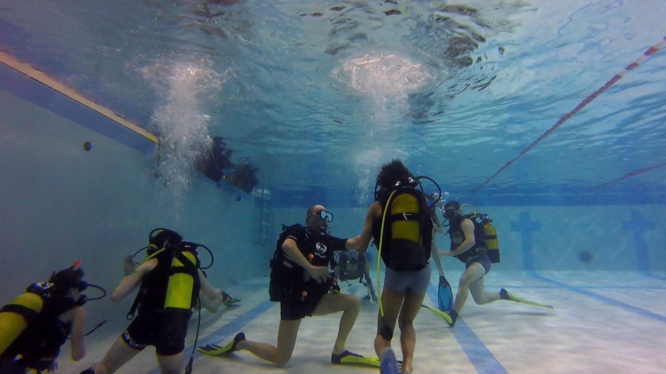 Cours de plongée hainaut