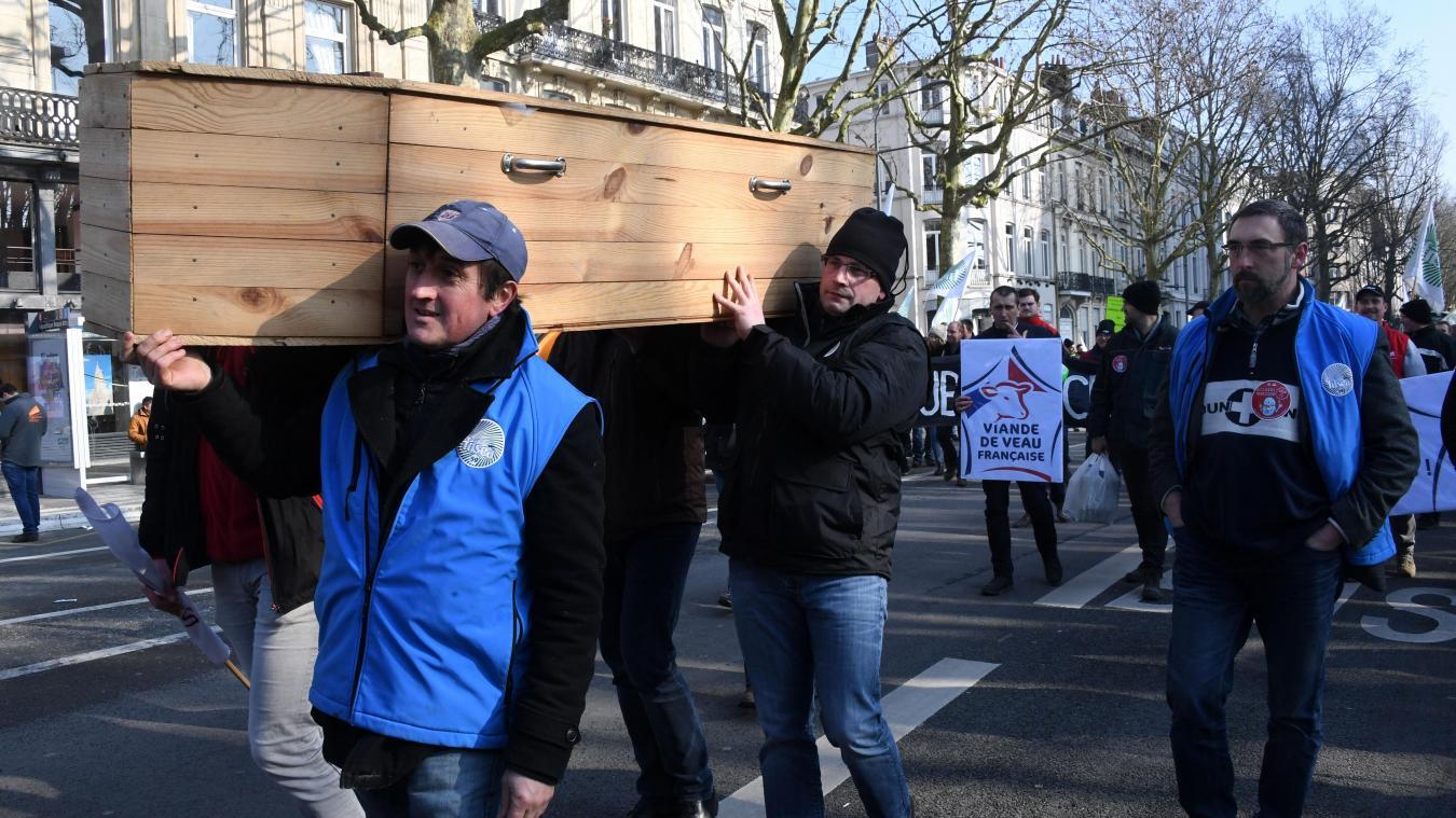 Mercosur : manifestations d'agriculteurs contre le projet d'accord avec l'Europe