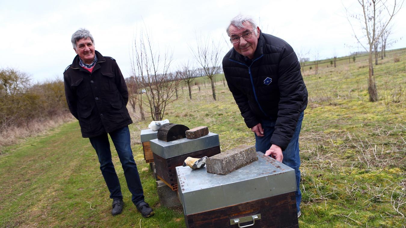La retraite arrivée, André-Marie Ledent (à gauche) et Gérald Collin se sont lancés dans la production de miel... ou plutôt la préservation des abeilles ! PHOTO ELISE CHIARI