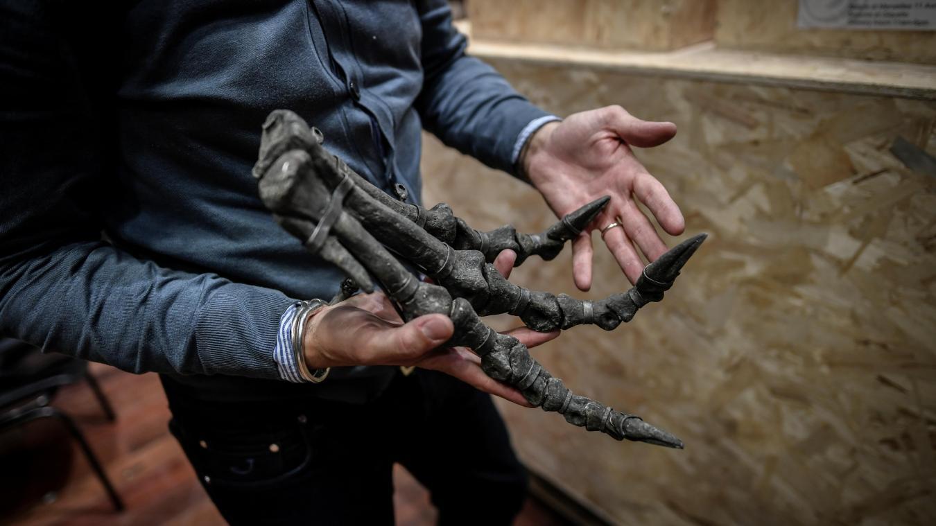 Deux squelettes de dinosaures vendus aux enchères à Paris