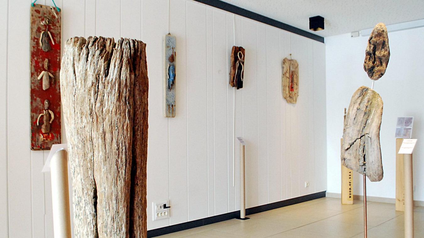 Que Faire Avec Bois Flotté calais les sculptures en bois flotté de benoît delannoy, à