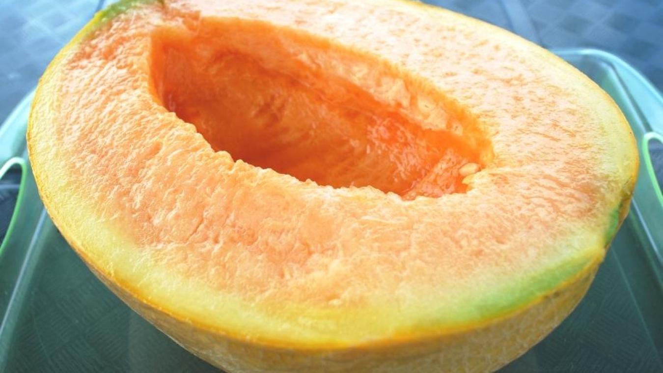Deux melons se sont vendus 25.000 euros — Japon