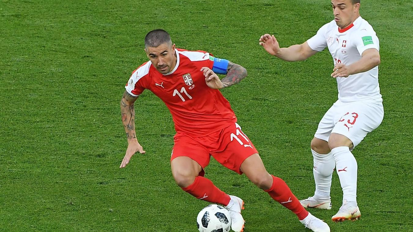 coupe du monde suivez la rencontre entre la serbie et la
