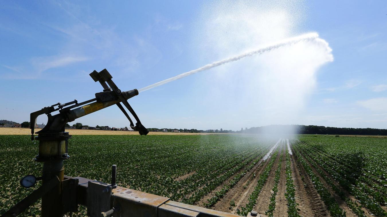 agriculture: les champs du nord – pas-de-calais ont soif, les
