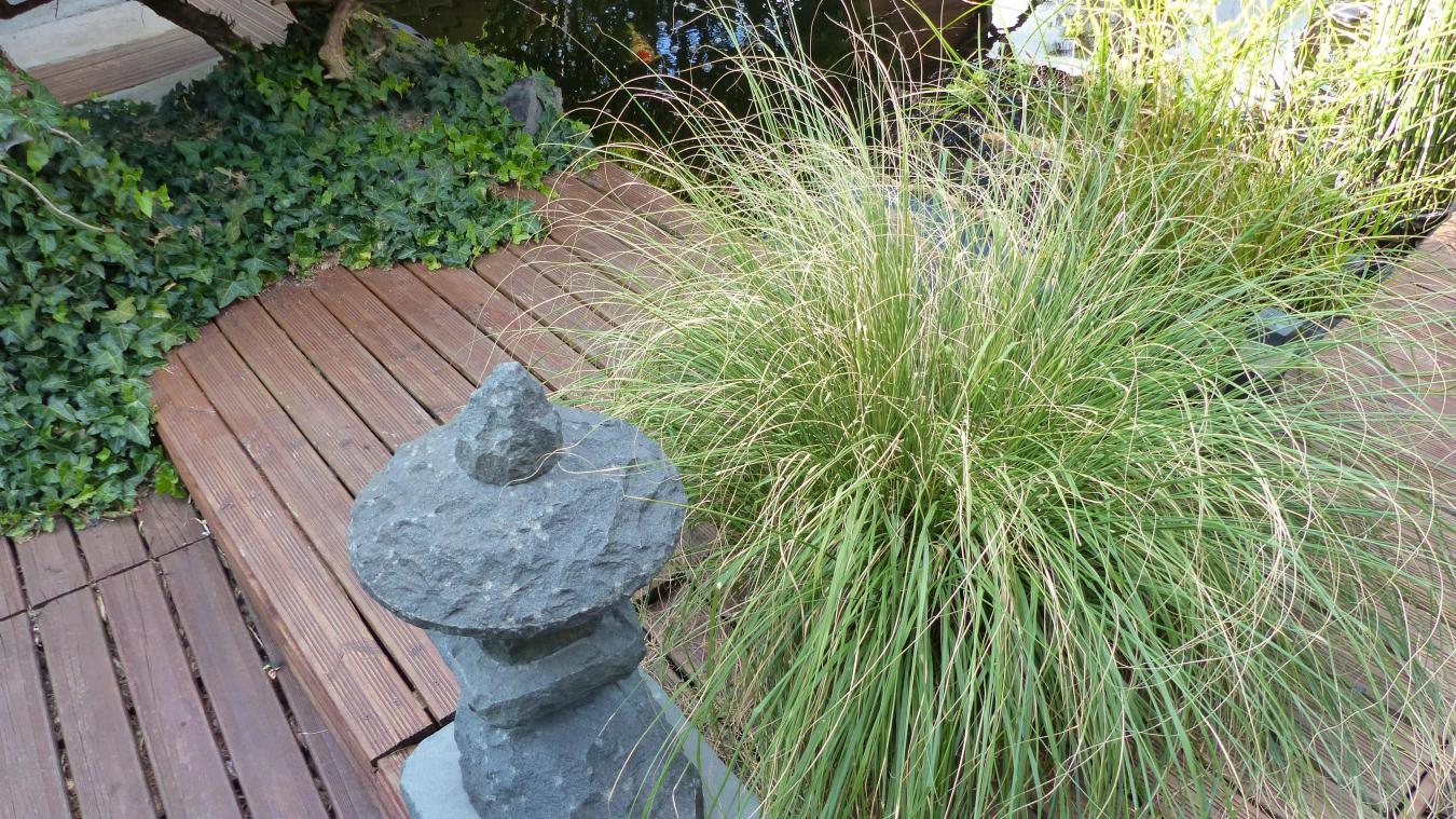 Photo Jardin Zen Chez Particulier photos : avec arnaud betou, un coin zen en zone urbaine - la