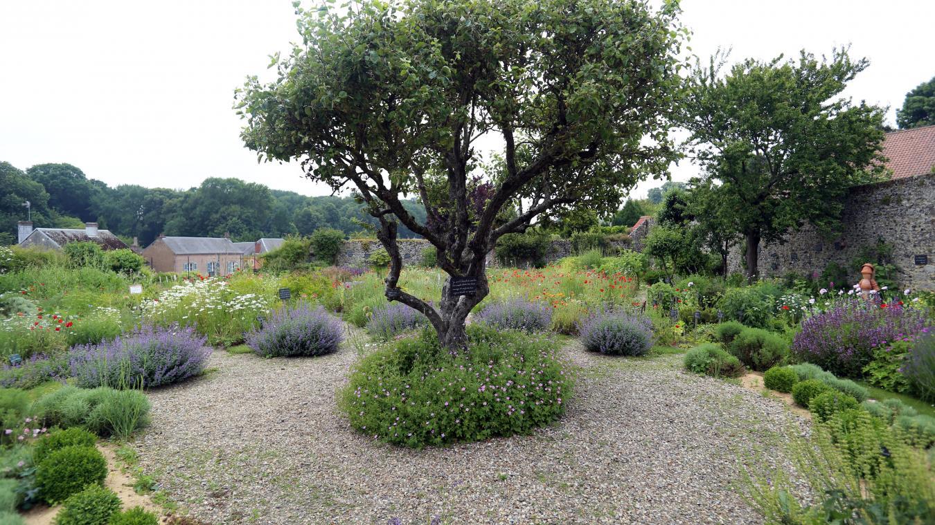 Belles Balades Saint Valery Sur Somme Cultiver Son Jardin A L