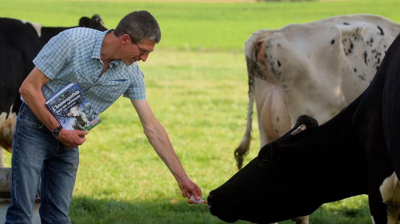 Médecines alternatives: L'homéopathie gagne du terrain dans les élevages du Nord - Pas-de-Calais