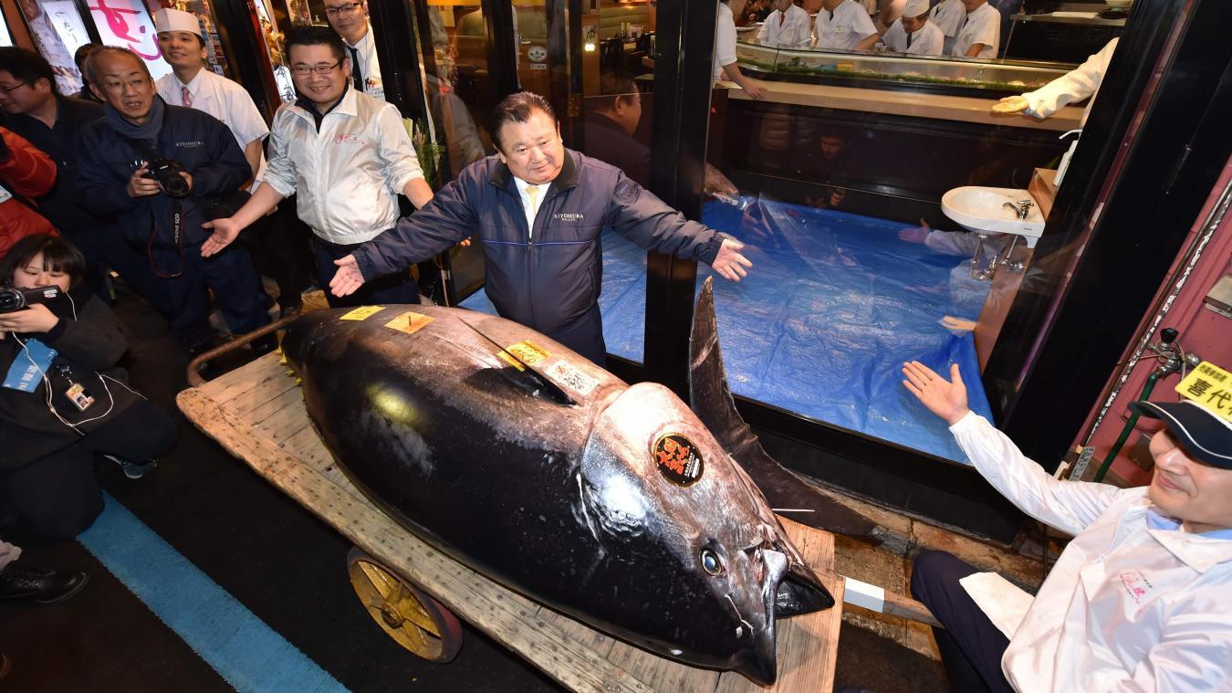 Japon: prix record de 4,1 millions $ pour un thon aux enchères