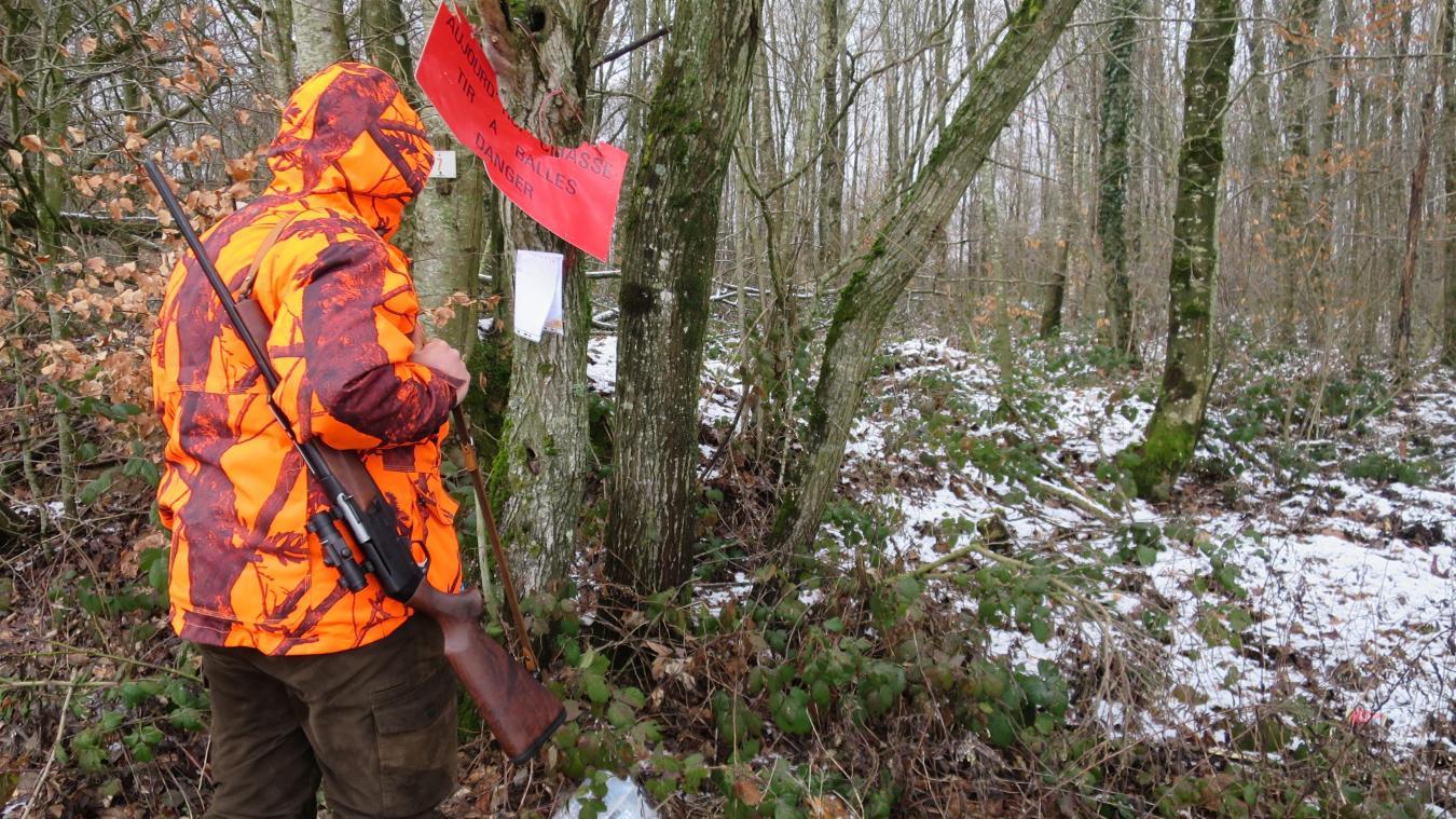 54 sangliers abattus en 5 jours, c'est bien loin des 500 à 600 sangliers à éradiquer en zone blanche meusienne et ardennaise. Photo l'Ardennais