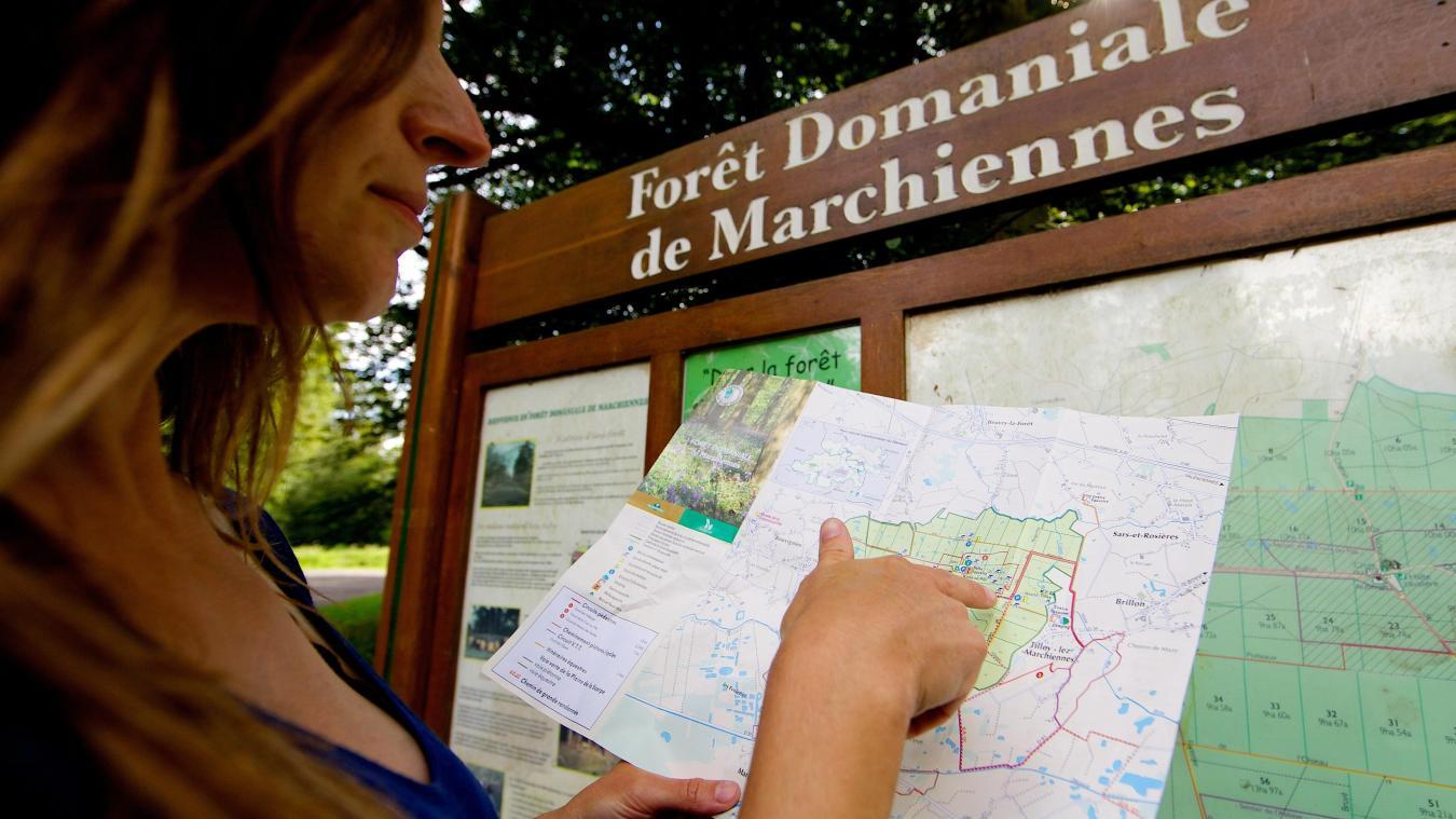 La Forêt Domaniale De Marchiennes Est Fréquentée Chaque Année Par Plusieurs  Dizaines De Milliers De Promeneurs
