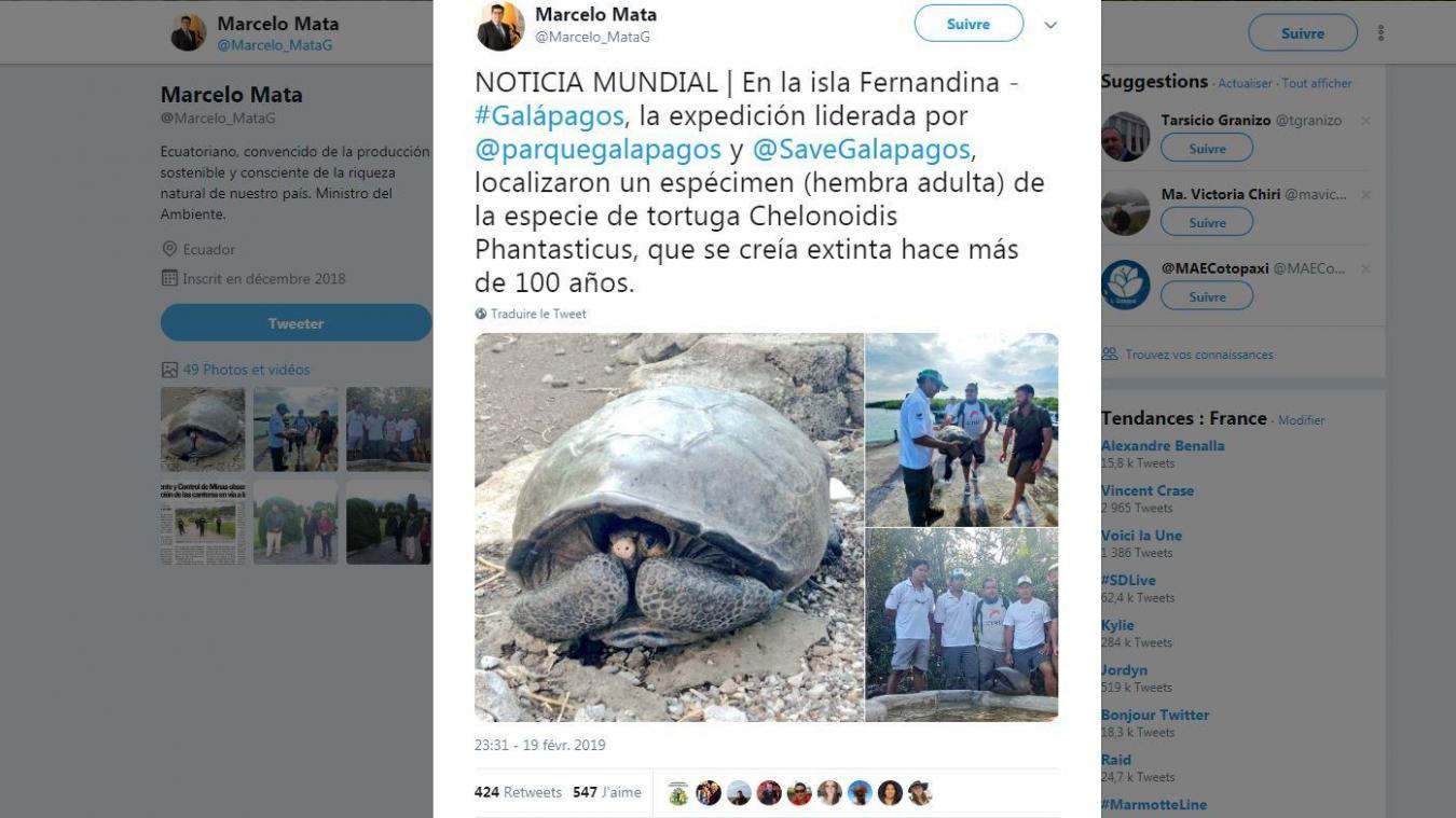 Découverte d'une tortue géante que l'on pensait éteinte depuis un siècle — Galapagos