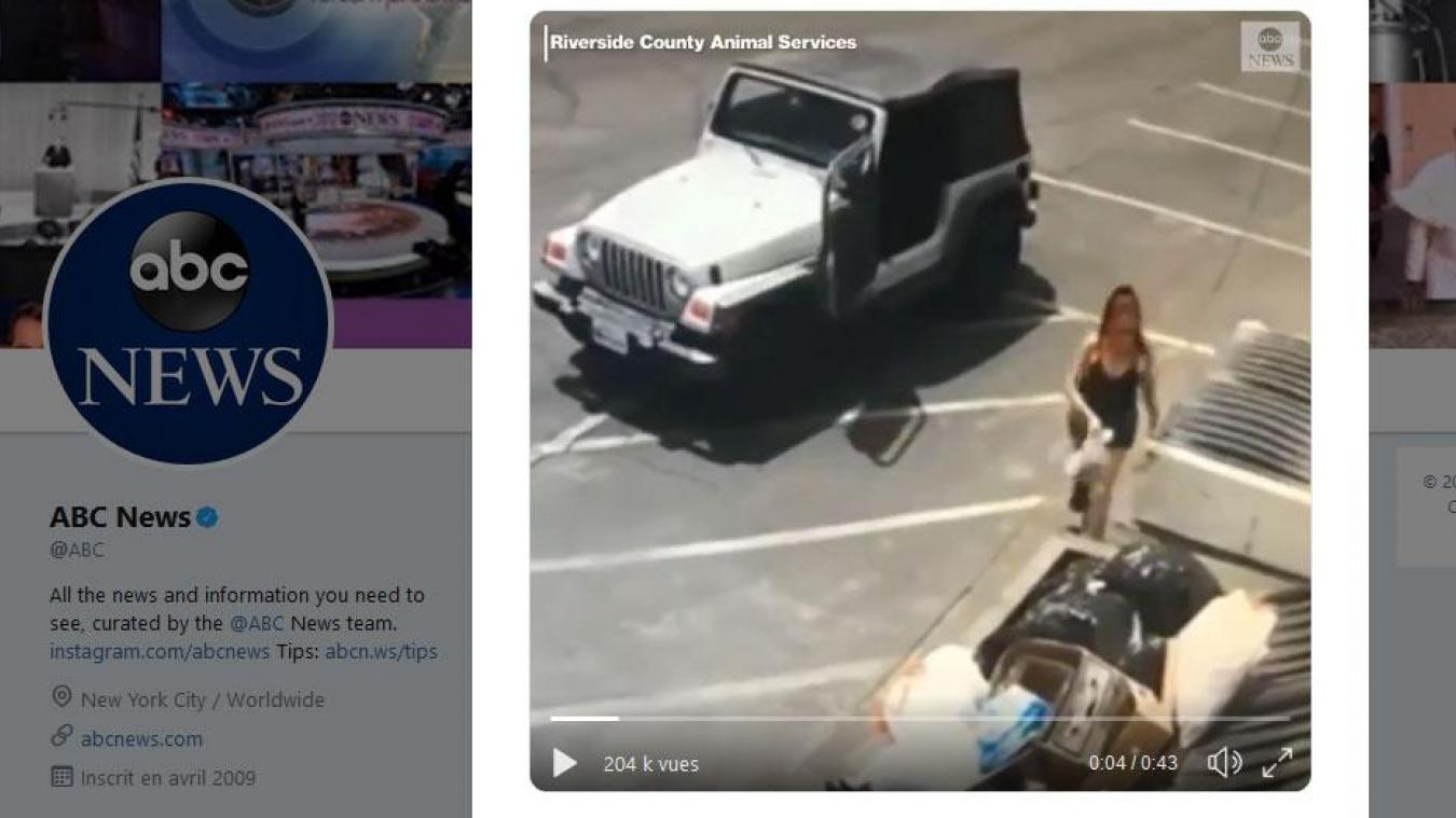 Filmée alors qu'elle jette des chiots dans une poubelle — États-Unis