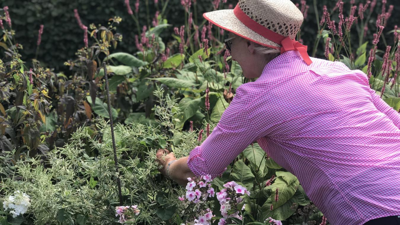 Photo Jardin Zen Chez Particulier douaisis une flânerie au cœur de jardins de particuliers