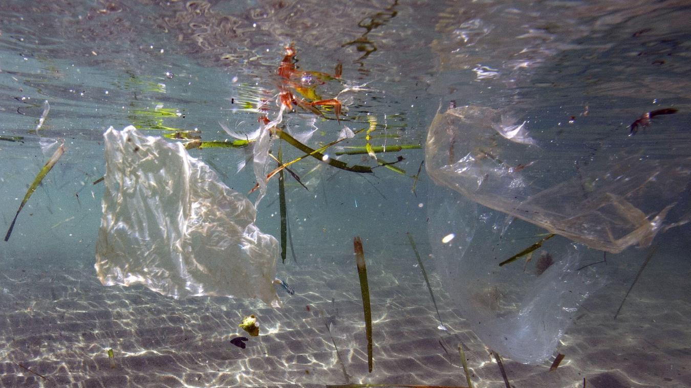 Méditerranée noyée sous le plastique