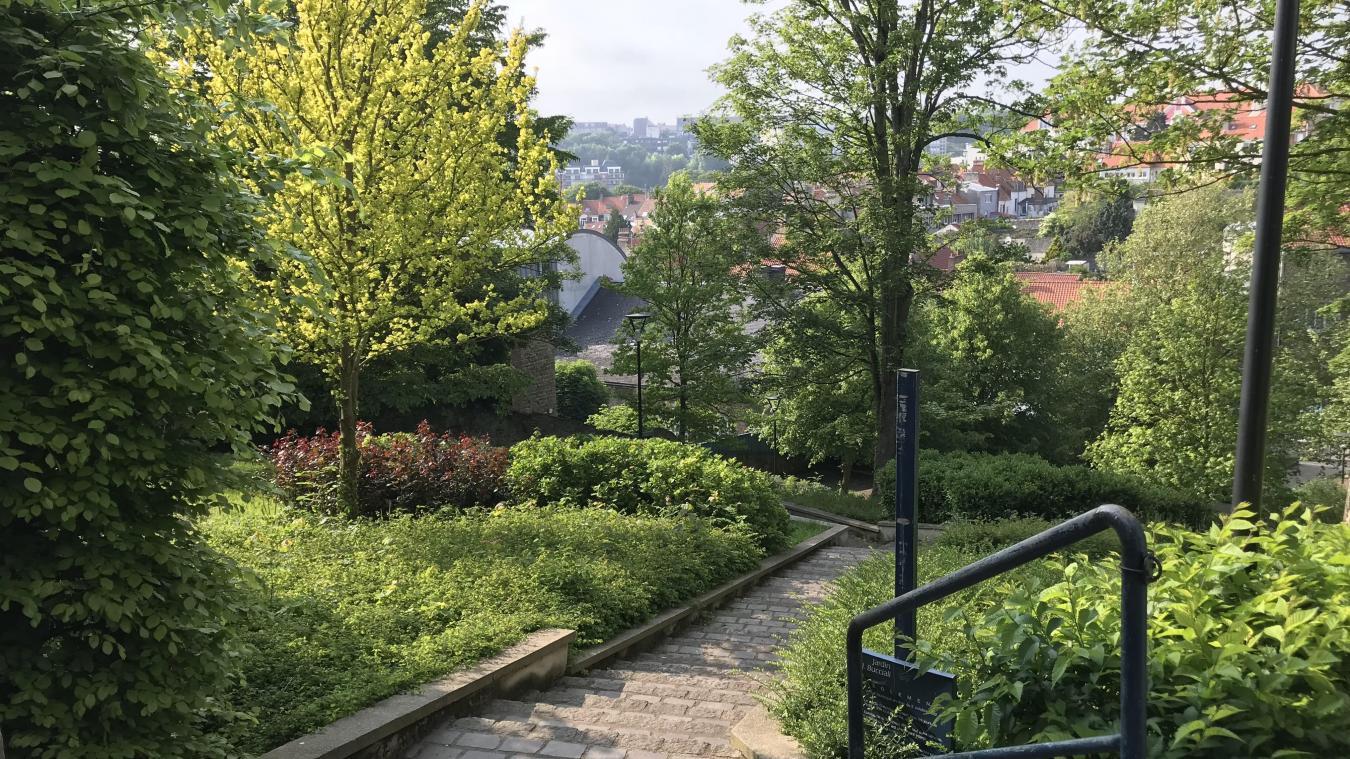 Photos Les Plus Beaux Jardins De La Ville La Voix Du Nord