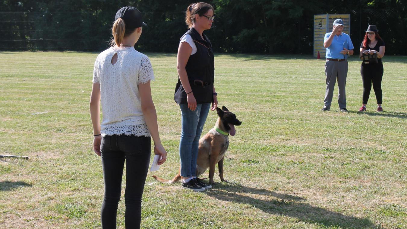 Calendrier Concours Obeissance 2022 Le concours d'obéissance canine se poursuit ce dimanche à Denain