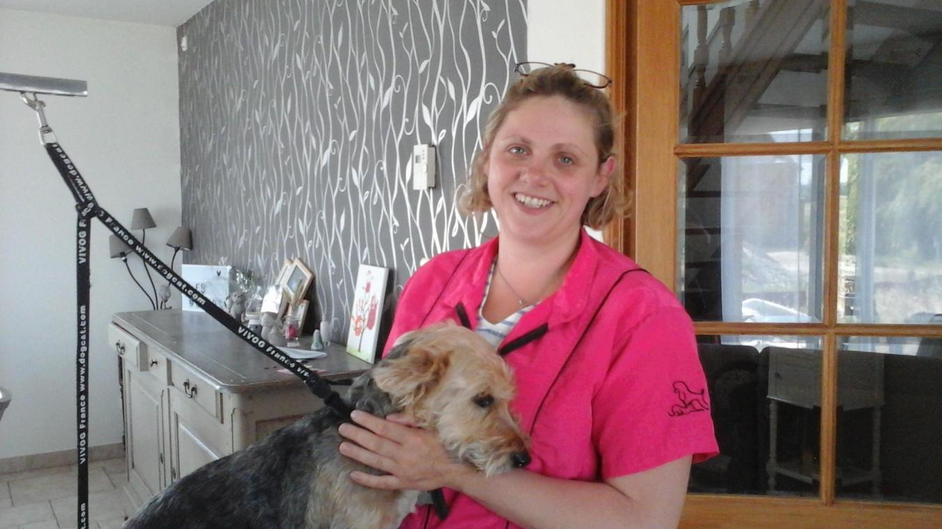 Bergues: Lucie Guilbert se déplace à domicile pour faire une beauté aux  chiens