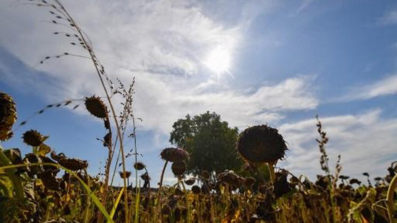Des citernes d'eau potable sont mises en place pour alimenter le plateau bortois — Sécheresse
