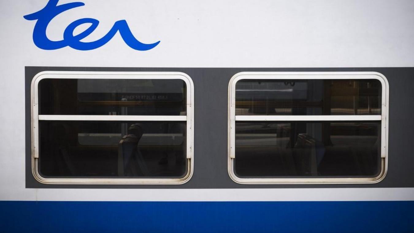 SNCF: Grève, panne d'électricité, le trafic TER est fortement
