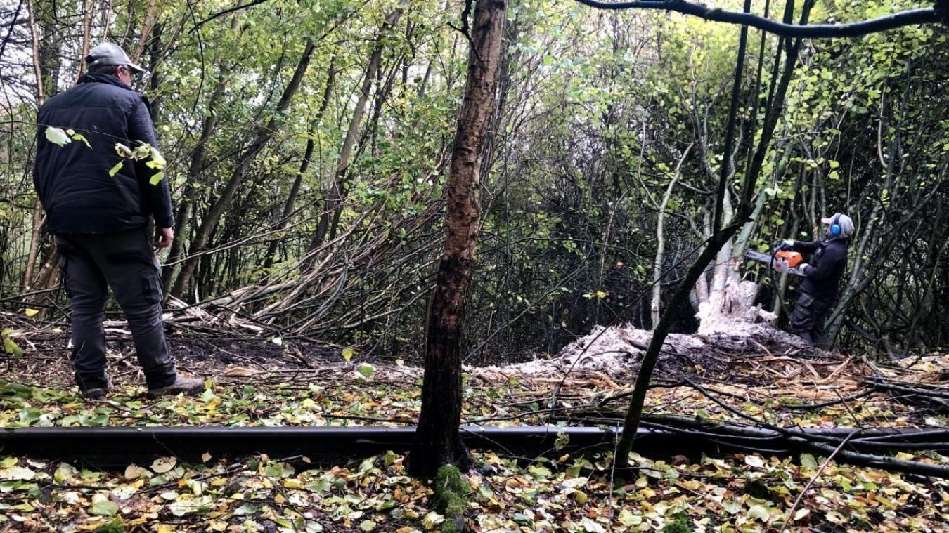 Inondations à Beuvry-la-Forêt : le chantier de la zone d'expansion de crue est lancé - La Voix du Nord
