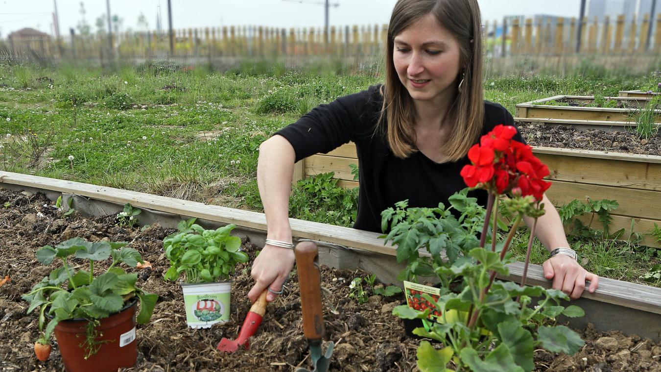 Les Jardineries Et Pepinieres Du Boulonnais Autorisees A Rouvrir