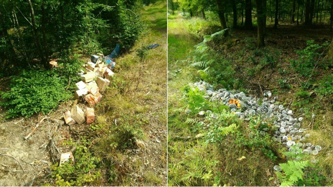 Des déchets alimentaires en forêt de Mormal c'est peu courant. D'habitude ce sont des machines à laver des divans des gravats de l'amiante