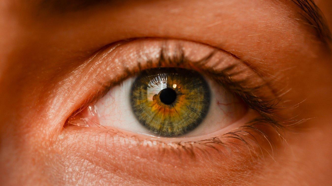 La rétinopathie ou rétinite pigmentaire est une maladie génétique dégénérative qui touche une personne sur 3 500. Photo d'illustration Pixabay