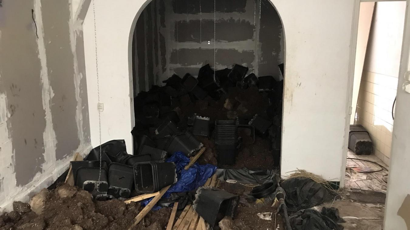 Le salon est une vaste jachère. Au fond, la fenêtre donnant sur la rue a été remplacée par un mur.
