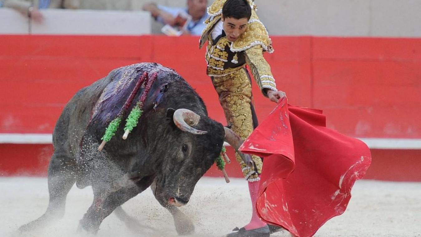Calendrier Corrida Espagne 2022 Nîmes: les anti corrida perdent une nouvelle bataille judiciaire