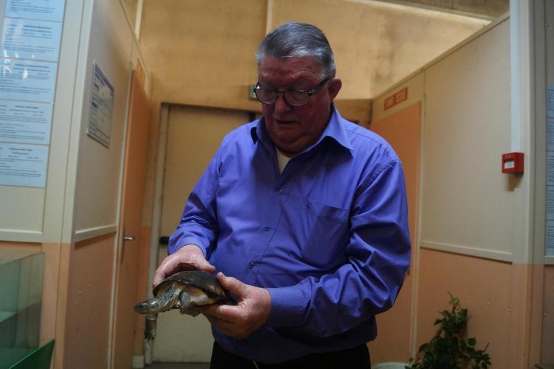 Roger Carpentier, le président de l'AATGS, aura bientôt une véranda avec un bassin pour ses tortues tropicales.