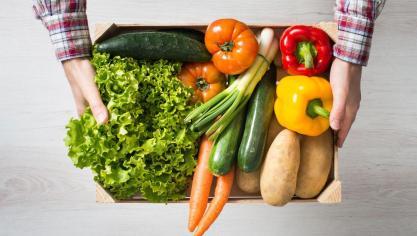e028a7f6c9f Des fruits et légumes du Tronquoy disponibles à la piscine