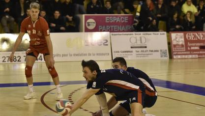 actualités volley ball
